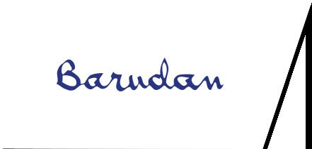 logo Barudan